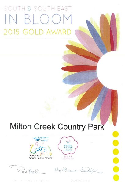 South East in Bloom – 2015 Gold Award