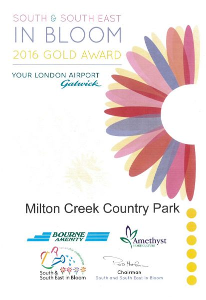 South East in Bloom – 2016 Gold Award
